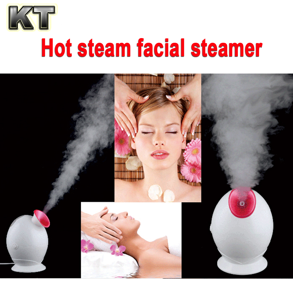 Factory supply low price cheap portable facial steamer nano facial mist sprayer