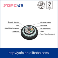 GYTA33/333 Underwater/Direct Buried Fiber Optic Cable steel wire armored waterproof with APL and PSP