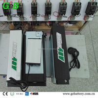 Electric Vehicle Lithium Battery Pack 48V 20Ah Rear Rack Type with Charger