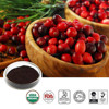 100% nature Cranberry P.E.Cranberry Juice Powder Extract