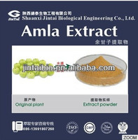 natural amla fruit extract powder 10:1 stock