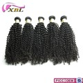 2016 New arrival styles order hair online , Mongolian Kinky Curly Human Hair Weave