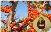 2015 hot sold seabuckthorn seed oil, 18 years professional manufaturer