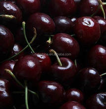 hot sale high quality fresh cherry