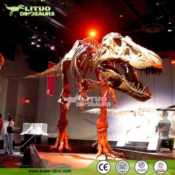 Science Museum Dinosaur Skeleton