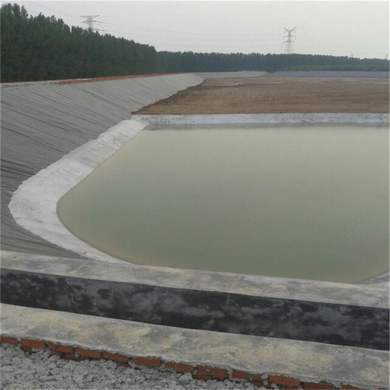 Hdpe Fish And Shrimp Pond Liner For Fish Farming Equipment