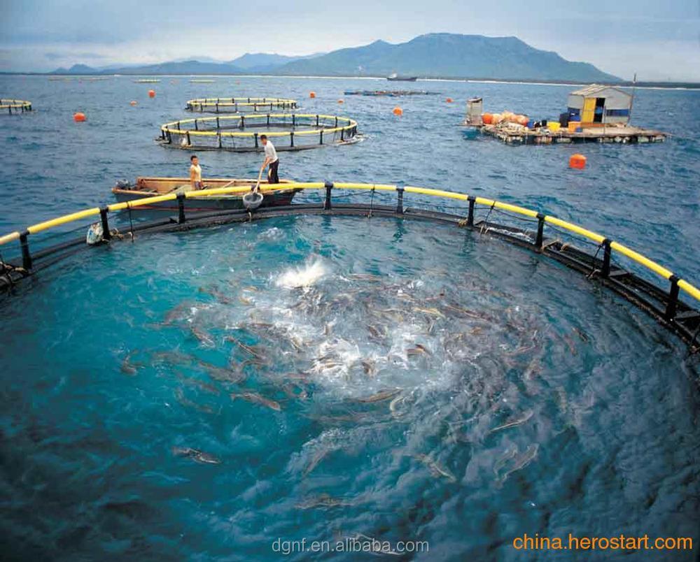 aquaculture fish farming net cagesaquaculture net cage in
