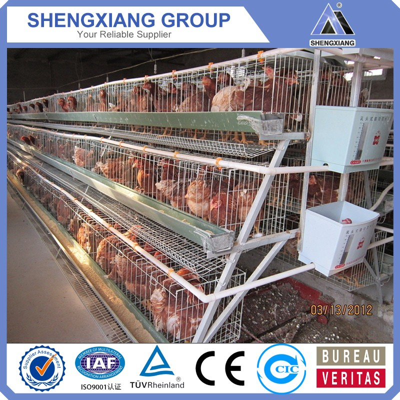 alibaba china supplier chicken cage provider
