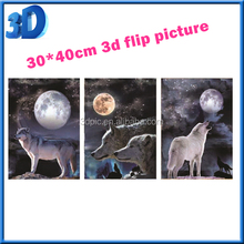 custom 3 images changing animal 3D flip pictures wolf