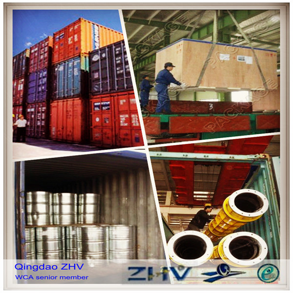 sea shipping freight forwarder in China to worldwide ports