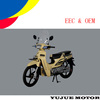 Chinese manufacturer eec cub motorcycle hot sell in Morocco