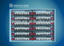 CE certificated 2 layer composite material synthetic polymer teeth