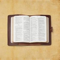 Custom genuine leather case cover for Bible and books