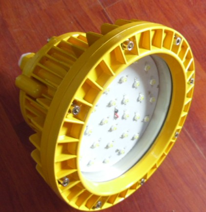 High Power 50W Led Outdoor Light/Led Flood Lamp explosion-proof,RoHS IP65