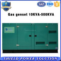 Low Noise Biogas Generator Set WIth Soundproof Canopy Bio Gas Generator