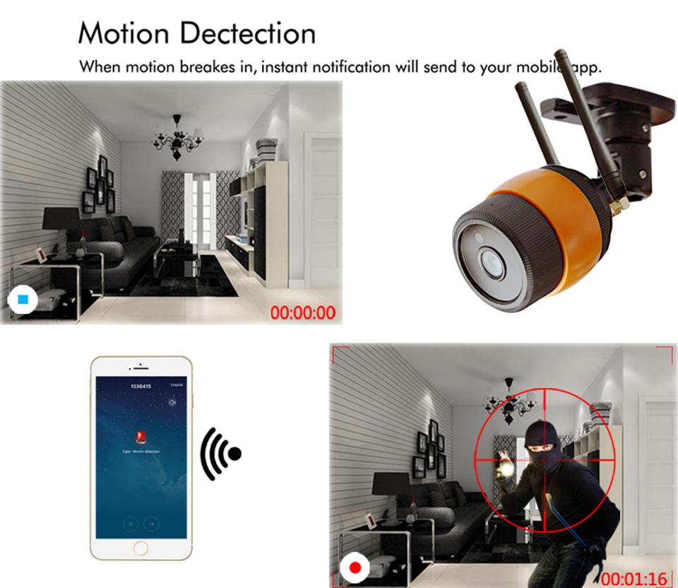 motion alarm
