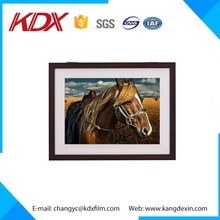 Famous 3D Horse Pictures Fine Wall Art Lenticular Painting Photo