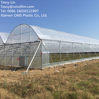 Anti- UV 200 micron greenhouse film for vegetable and flower planting