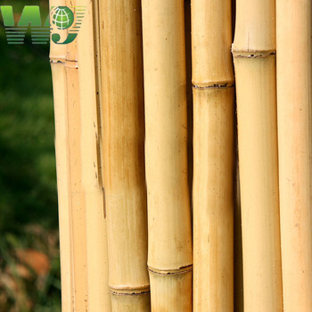 2017 Bamboo stakes, moso bamboo poles, and tonkin cane bamboo