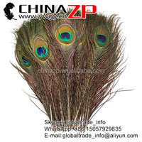 Trade Assurance Gold Supplier Factory wholesale high quality size From 10 to 12inch Big Eye Natural Peacock Feathers