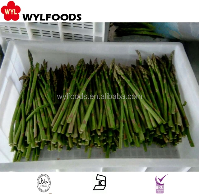 China supplier IQF asparagus green spears price for