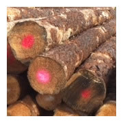 Syp Logs Ukrainian Pine Spruce Fir Timber directly from producer