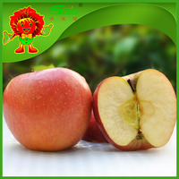 Selected apples chinese fresh new season apple top red apple