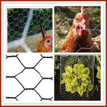 High quality chicken coop mesh craft made in china