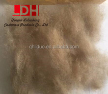 good quality kyrgyz cashmere fibre for 17.5mic dehaired cashmere fibre type