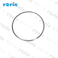 OEM China Steam Turbine Parts Z331-35 sealing gasket & seal ring for PVH074 EH oil pump