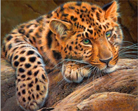 GZ544- 40*50 carefree leopard on stone Wall art canvas diamond painting abstract art work