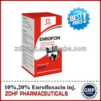 veterinary manufacturing company cure Infections medicine 10% Enrofloxacin liuqid oral solution in cattle goat pig