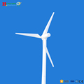 Low starting torque green energy vertical axis wind mill generator 50KW