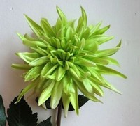 realistic artificial green flower , pretty Pu dahlia for sale