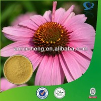 Factory Provide Best Natual Echinacea Root P.E. in High Quality