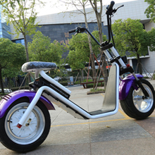 Competitive Price Directly Electric Halley Scooter High Quality Citycoco Electric Style