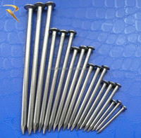 factory export common round nails(Chinese)