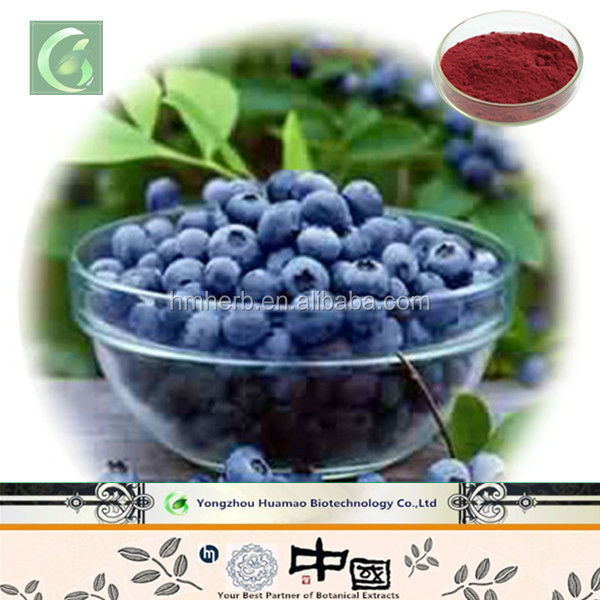 China exporters manufacturing 10%,15%,25% Anthocyanidin/anthocyanin Vaccinium myrtillus