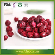 Sour Cherry Type and Dried Style Fruit Snack Product Freeze Dried Sour Cherry