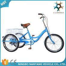 Hot sale famous cargo tricycle