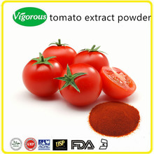 high quality tomato extract powder pure nature