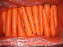 Washed Fresh Carrot For Sale