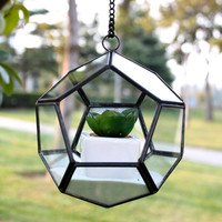 Hanging round globe shape iron frame glass plants terrarium jar