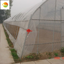 hot sale--cheap tunnel greenhouse/cheap multi span greenhouse