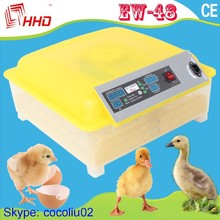 Special Price Mini Automatic Chicken Incubator Digital Temperature Humidty Controller for Families Using