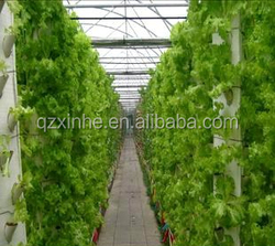 Convenience high quality hydroponic system