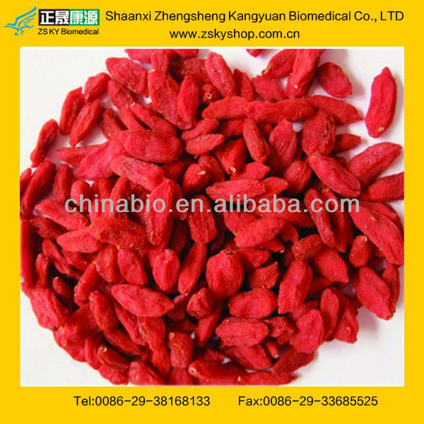Natural Chinese medlar fruits/wolfberry