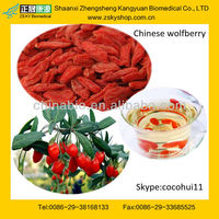 GMP certified supply high quality Dried Goji Berry/ Red Medlar/ Chinese medlar