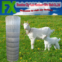 High quality new products fence for goat