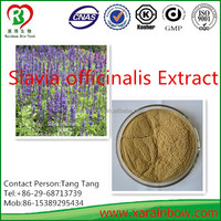 Comptitive price and Top quality Salvia officinalis Extract Powder